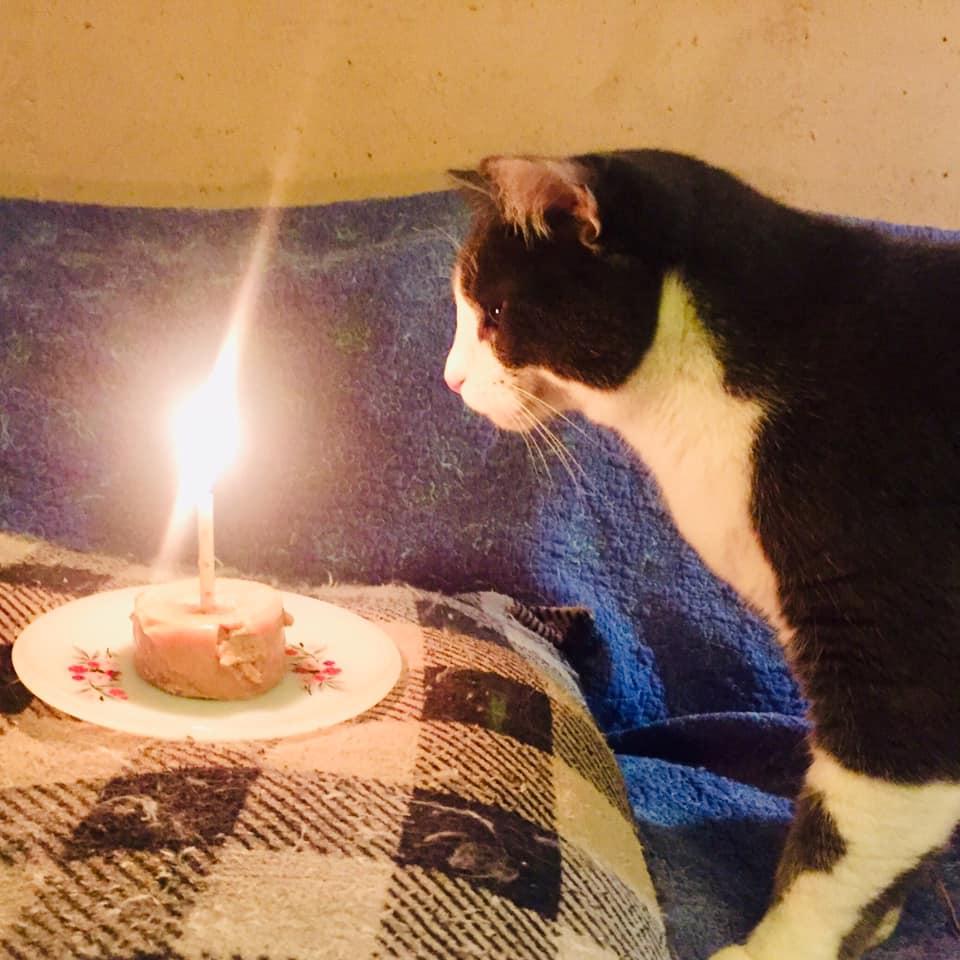 Jr Birthday